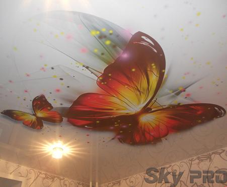 Изображение для фотопечати на потолках